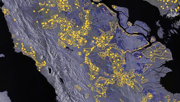 Malaysia Sentinel-1 palm concessions and mills