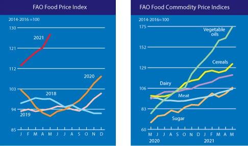 Market Forecasting Framework