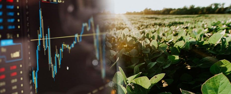 market_forecasting_graphic