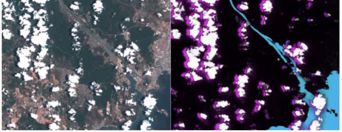 optical-image-segmentation