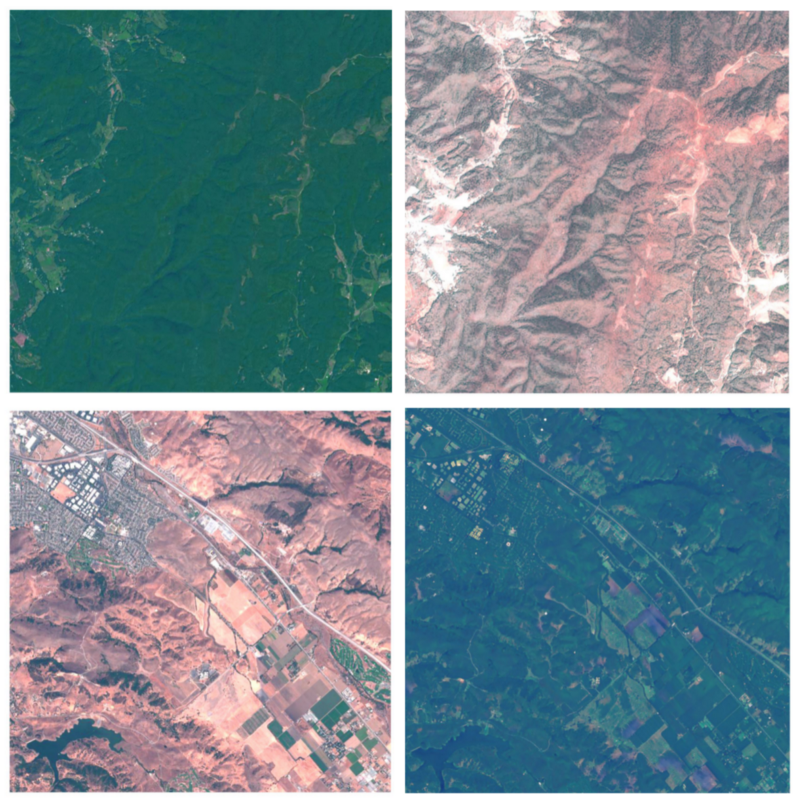 The real 'forested' and 'dry' images in the left-most column are from Virginia and California respectively